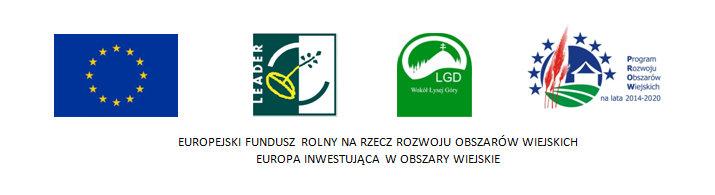 logootypy_lsr_2014_2020